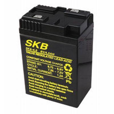 GBC BATTERIA PIOMBO 6V/4,5A 38.6204.06 ricambio per lampada ricaricabile 38.8004.00