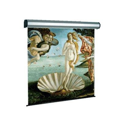 SOPAR SCHERMO 5301-3D  300x225cm ELETTRI Tela AVATAR silver per proiezioni in 3D